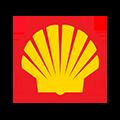 wilczynski-shell